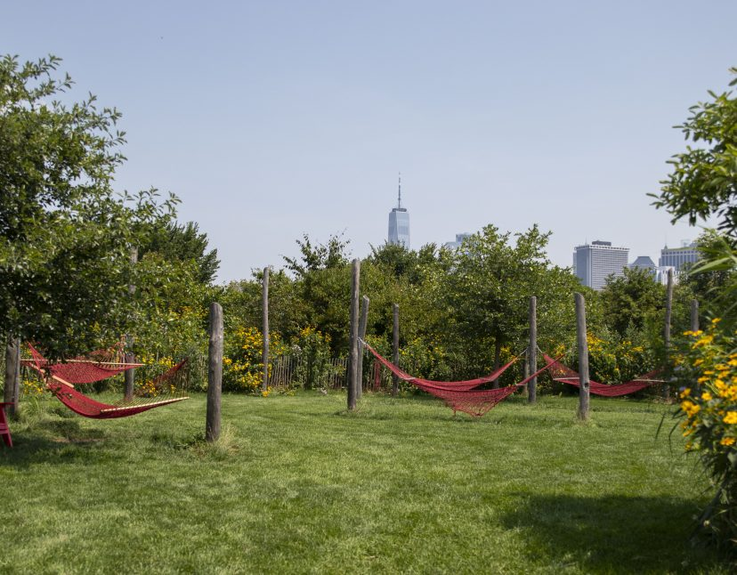 Spend A Lazy Summer Day In A Hammock On Governors Island